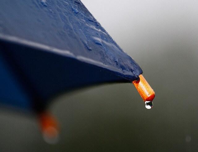 傘と雨のしずく