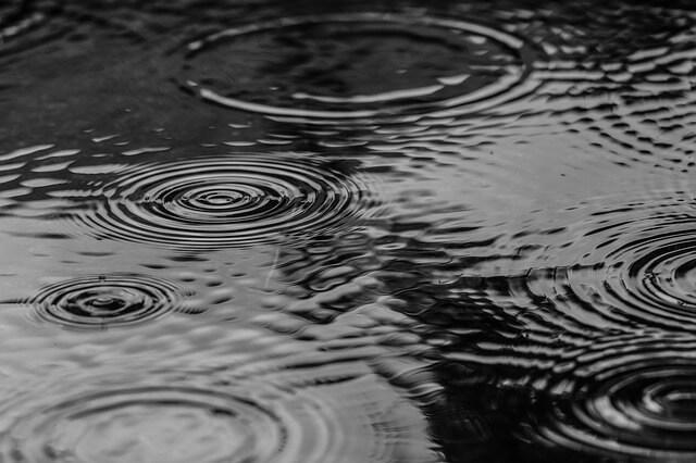 水たまりと雨の波紋